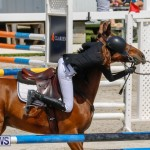 FEI World Jumping Challenge Bermuda, March 31 2018-8103