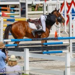 FEI World Jumping Challenge Bermuda, March 31 2018-8106