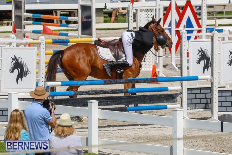 FEI-World-Jumping-Challenge-Bermuda-March-31-2018-8106