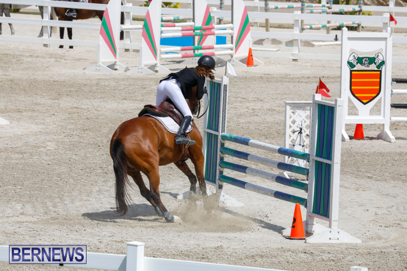 FEI-World-Jumping-Challenge-Bermuda-March-31-2018-8118