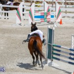 FEI World Jumping Challenge Bermuda, March 31 2018-8121