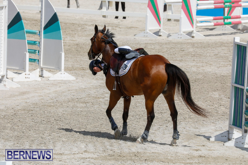 FEI-World-Jumping-Challenge-Bermuda-March-31-2018-8123
