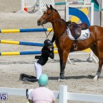 FEI World Jumping Challenge Bermuda, March 31 2018-8130