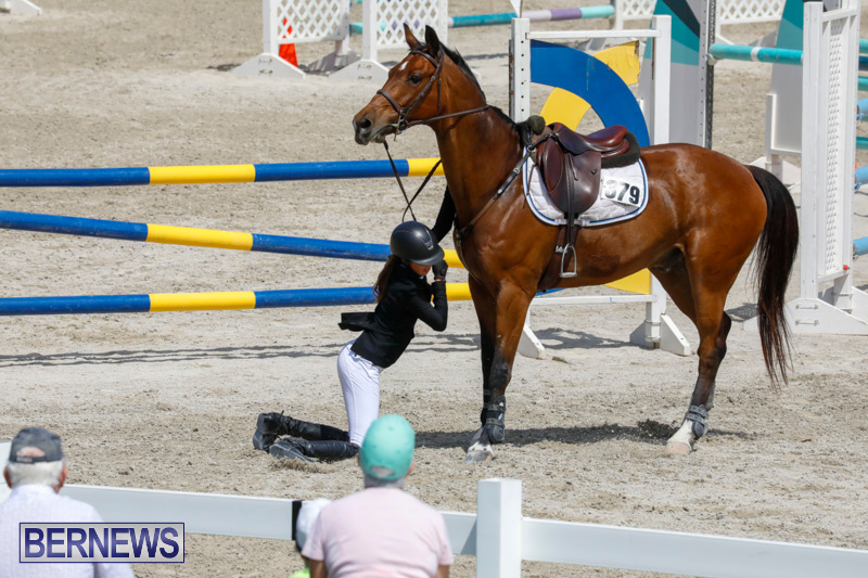 FEI-World-Jumping-Challenge-Bermuda-March-31-2018-8130
