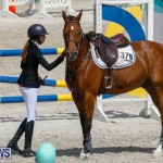 FEI World Jumping Challenge Bermuda, March 31 2018-8131