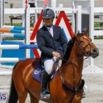 FEI World Jumping Challenge Bermuda, March 31 2018-8134