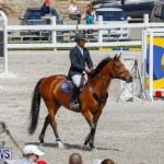 FEI World Jumping Challenge Bermuda, March 31 2018-8136