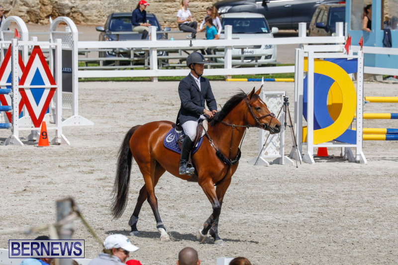 FEI-World-Jumping-Challenge-Bermuda-March-31-2018-8136