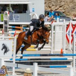 FEI World Jumping Challenge Bermuda, March 31 2018-8138