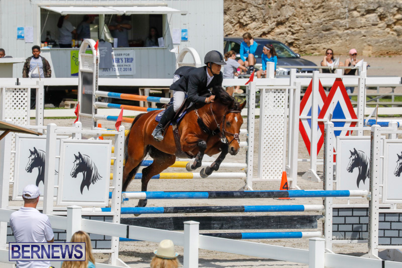 FEI-World-Jumping-Challenge-Bermuda-March-31-2018-8138