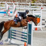 FEI World Jumping Challenge Bermuda, March 31 2018-8145