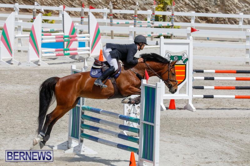 FEI-World-Jumping-Challenge-Bermuda-March-31-2018-8145