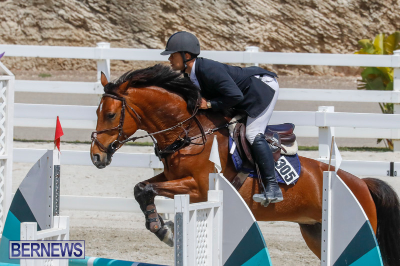 FEI-World-Jumping-Challenge-Bermuda-March-31-2018-8152