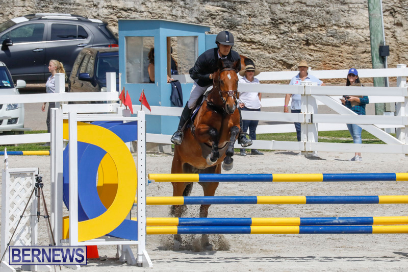 FEI-World-Jumping-Challenge-Bermuda-March-31-2018-8160