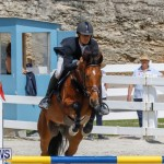 FEI World Jumping Challenge Bermuda, March 31 2018-8161