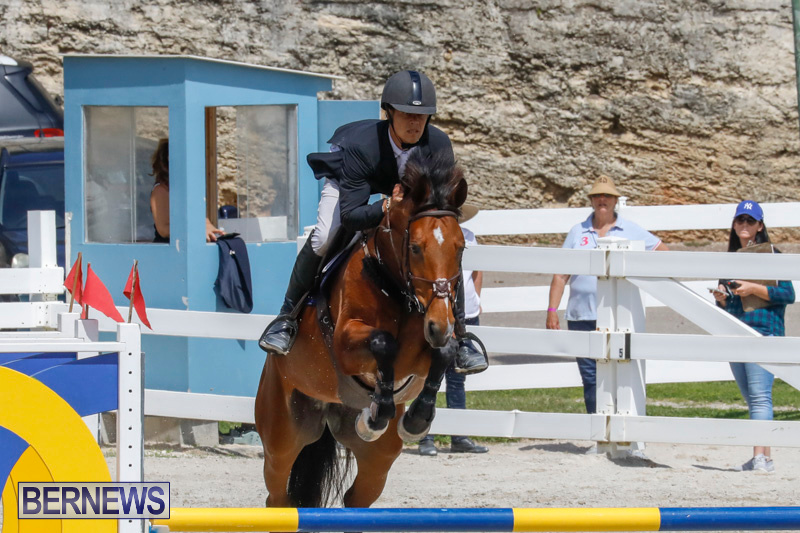 FEI-World-Jumping-Challenge-Bermuda-March-31-2018-8161