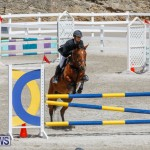 FEI World Jumping Challenge Bermuda, March 31 2018-8165