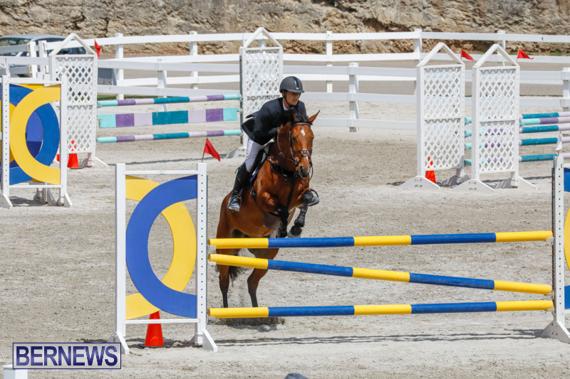 FEI-World-Jumping-Challenge-Bermuda-March-31-2018-8165