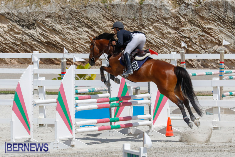 FEI-World-Jumping-Challenge-Bermuda-March-31-2018-8172
