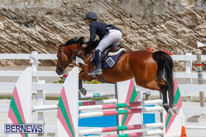 FEI-World-Jumping-Challenge-Bermuda-March-31-2018-8173