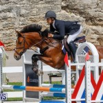 FEI World Jumping Challenge Bermuda, March 31 2018-8176