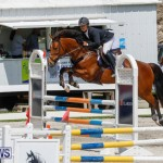 FEI World Jumping Challenge Bermuda, March 31 2018-8179