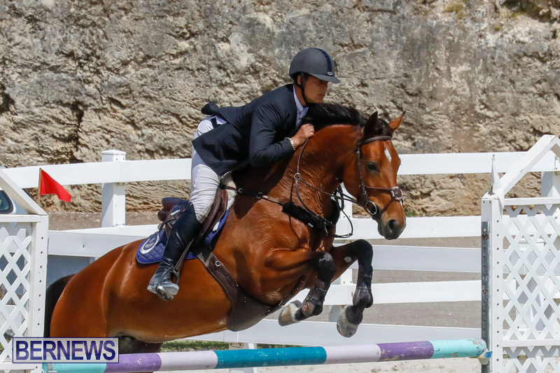 FEI-World-Jumping-Challenge-Bermuda-March-31-2018-8183