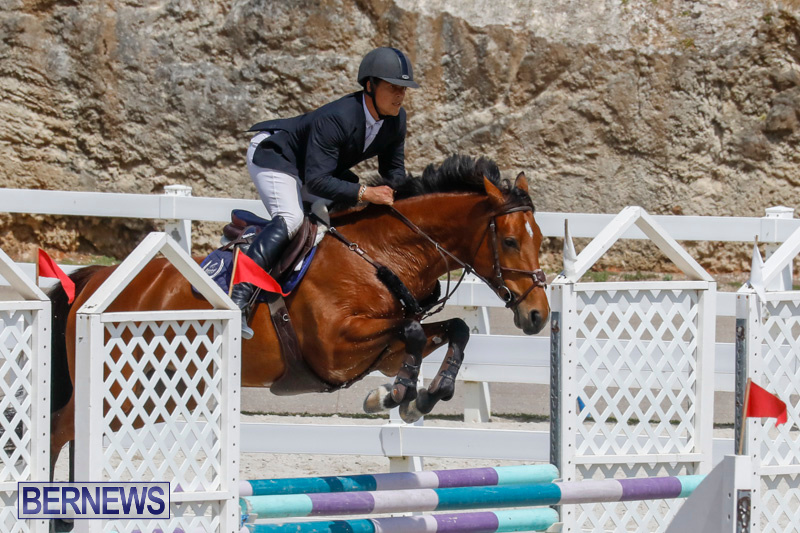 FEI-World-Jumping-Challenge-Bermuda-March-31-2018-8186