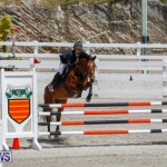 FEI World Jumping Challenge Bermuda, March 31 2018-8191