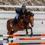 FEI World Jumping Challenge Bermuda, March 31 2018-8192