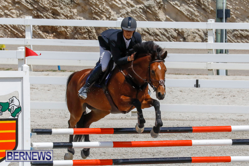 FEI-World-Jumping-Challenge-Bermuda-March-31-2018-8192