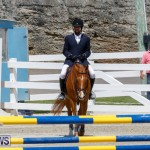 FEI World Jumping Challenge Bermuda, March 31 2018-8205