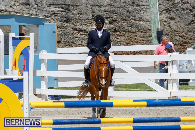FEI-World-Jumping-Challenge-Bermuda-March-31-2018-8205