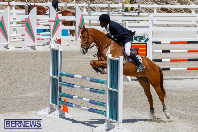 FEI-World-Jumping-Challenge-Bermuda-March-31-2018-8211