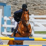 FEI World Jumping Challenge Bermuda, March 31 2018-8217