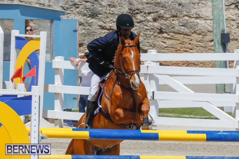 FEI-World-Jumping-Challenge-Bermuda-March-31-2018-8217