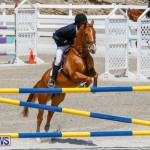 FEI World Jumping Challenge Bermuda, March 31 2018-8222