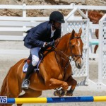 FEI World Jumping Challenge Bermuda, March 31 2018-8223