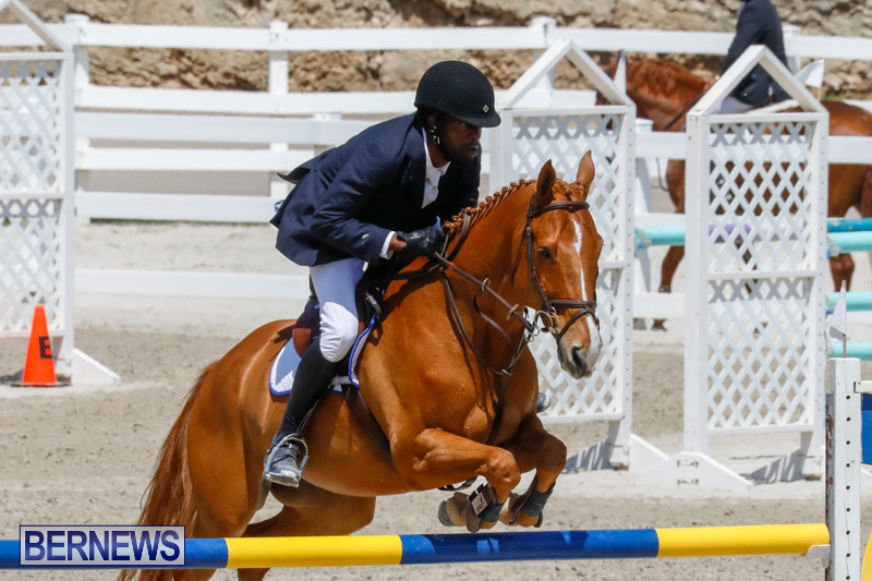 FEI-World-Jumping-Challenge-Bermuda-March-31-2018-8223