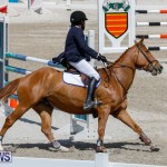 FEI World Jumping Challenge Bermuda, March 31 2018-8226