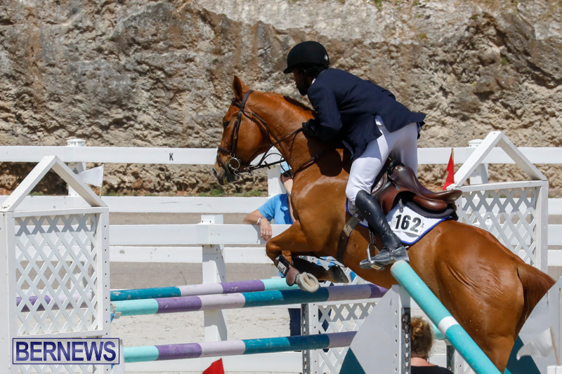 FEI-World-Jumping-Challenge-Bermuda-March-31-2018-8229