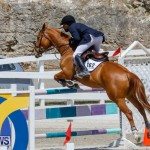 FEI World Jumping Challenge Bermuda, March 31 2018-8232