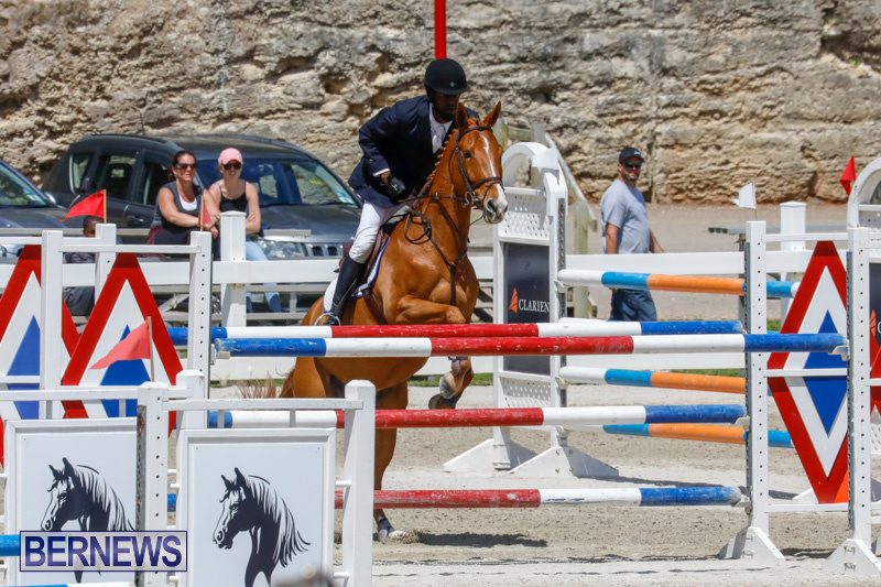 FEI-World-Jumping-Challenge-Bermuda-March-31-2018-8237