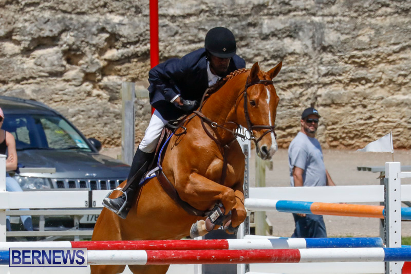 FEI-World-Jumping-Challenge-Bermuda-March-31-2018-8238