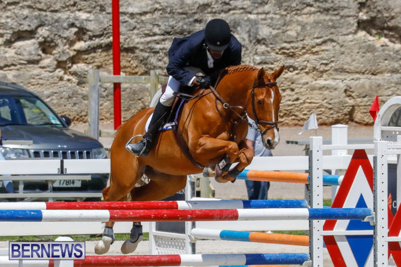 FEI-World-Jumping-Challenge-Bermuda-March-31-2018-8239