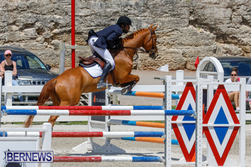 FEI-World-Jumping-Challenge-Bermuda-March-31-2018-8246