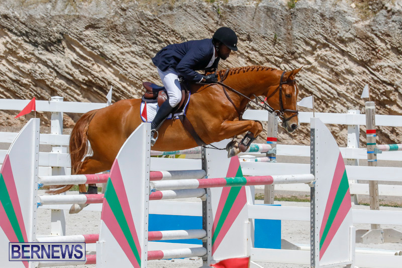 FEI-World-Jumping-Challenge-Bermuda-March-31-2018-8250