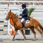 FEI World Jumping Challenge Bermuda, March 31 2018-8255