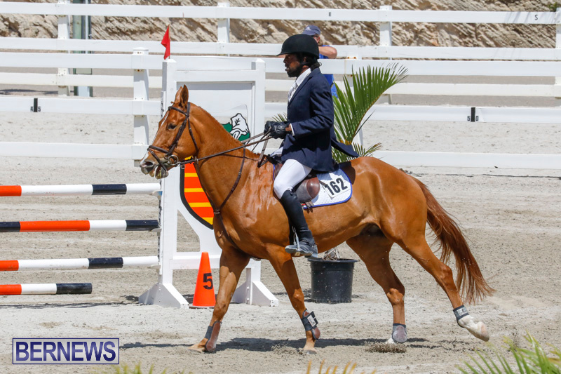 FEI-World-Jumping-Challenge-Bermuda-March-31-2018-8255