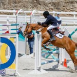 FEI World Jumping Challenge Bermuda, March 31 2018-8256